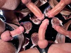 HD Gays
